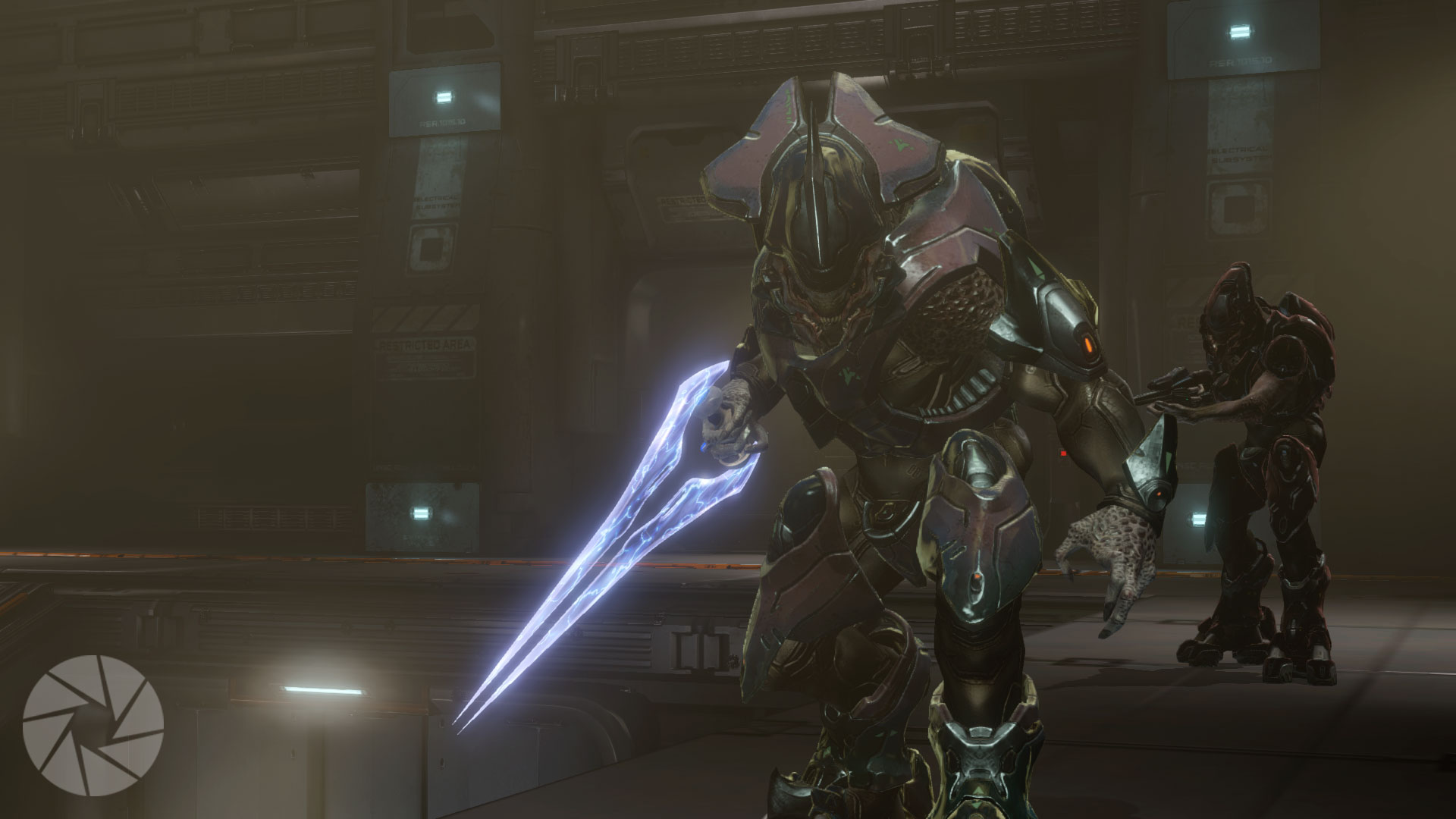 About the Sangheili... : HaloStory